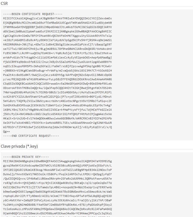 Imagen 5 - Cómo instalar un certificado SSL en Plesk Onyx - CSR y KEY