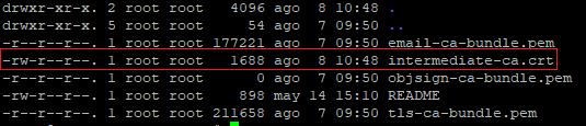 Imagen 10 - Cómo instalar un certificado SSL en CentOS 7 Ruta /ca-trust/extracted/pem